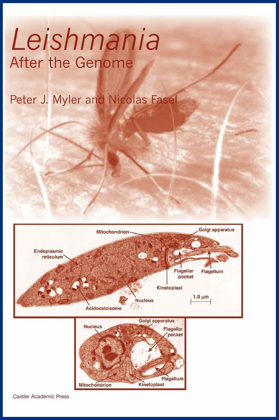 <i>Leishmania</i> book