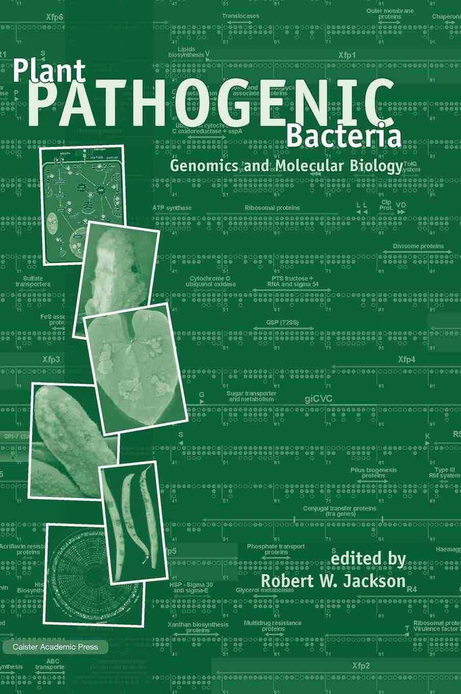 Plant Pathogenic Bacteria: Genomics and Molecular Biology