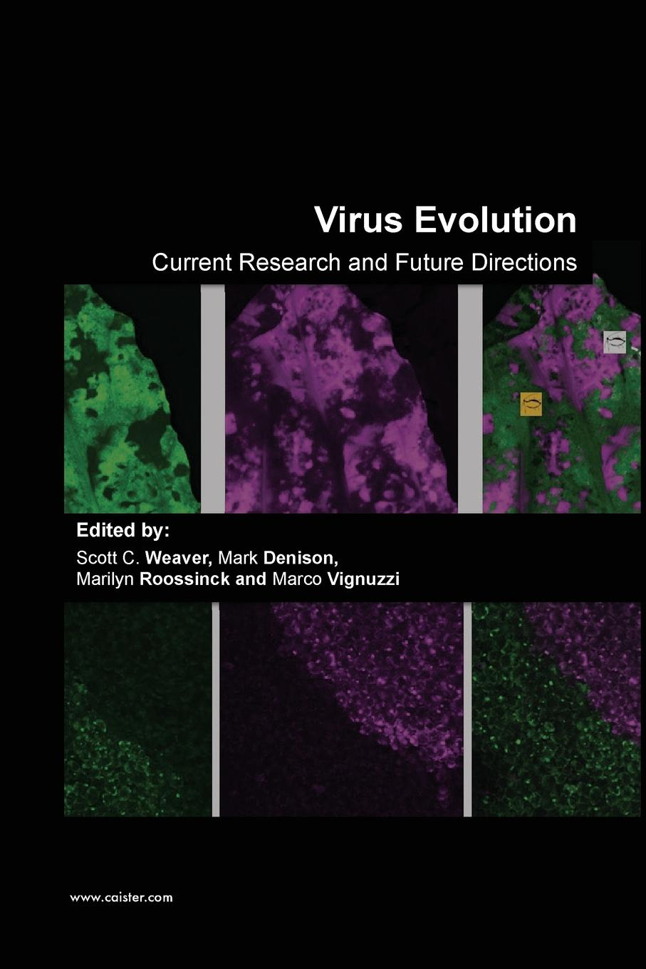 Virus Evolution: Current Research and Future Directions