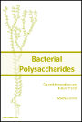 Bacterial Polysaccharides: Current Innovations and Future Trends