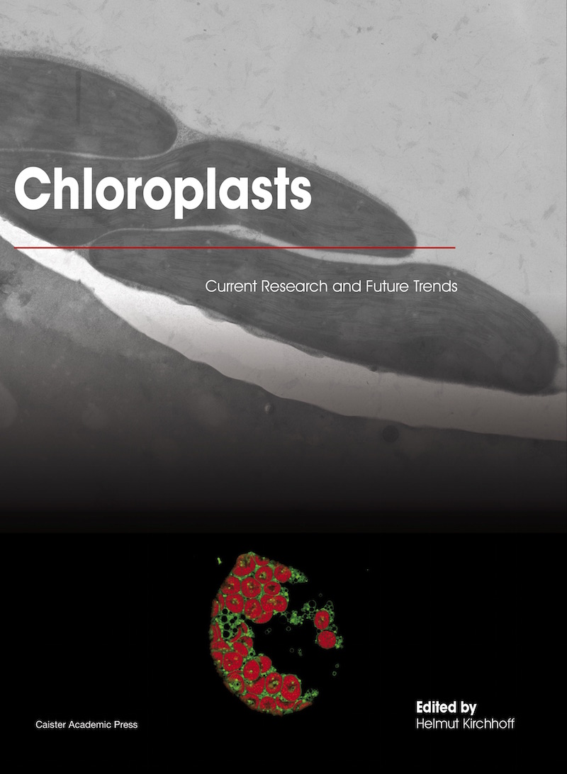 Chloroplasts: Current Research and Future Trends