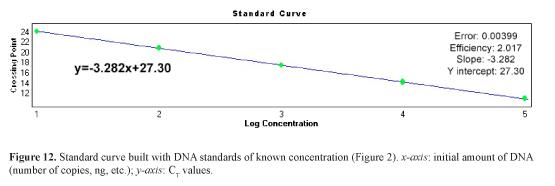 pcr-quantification-analysis